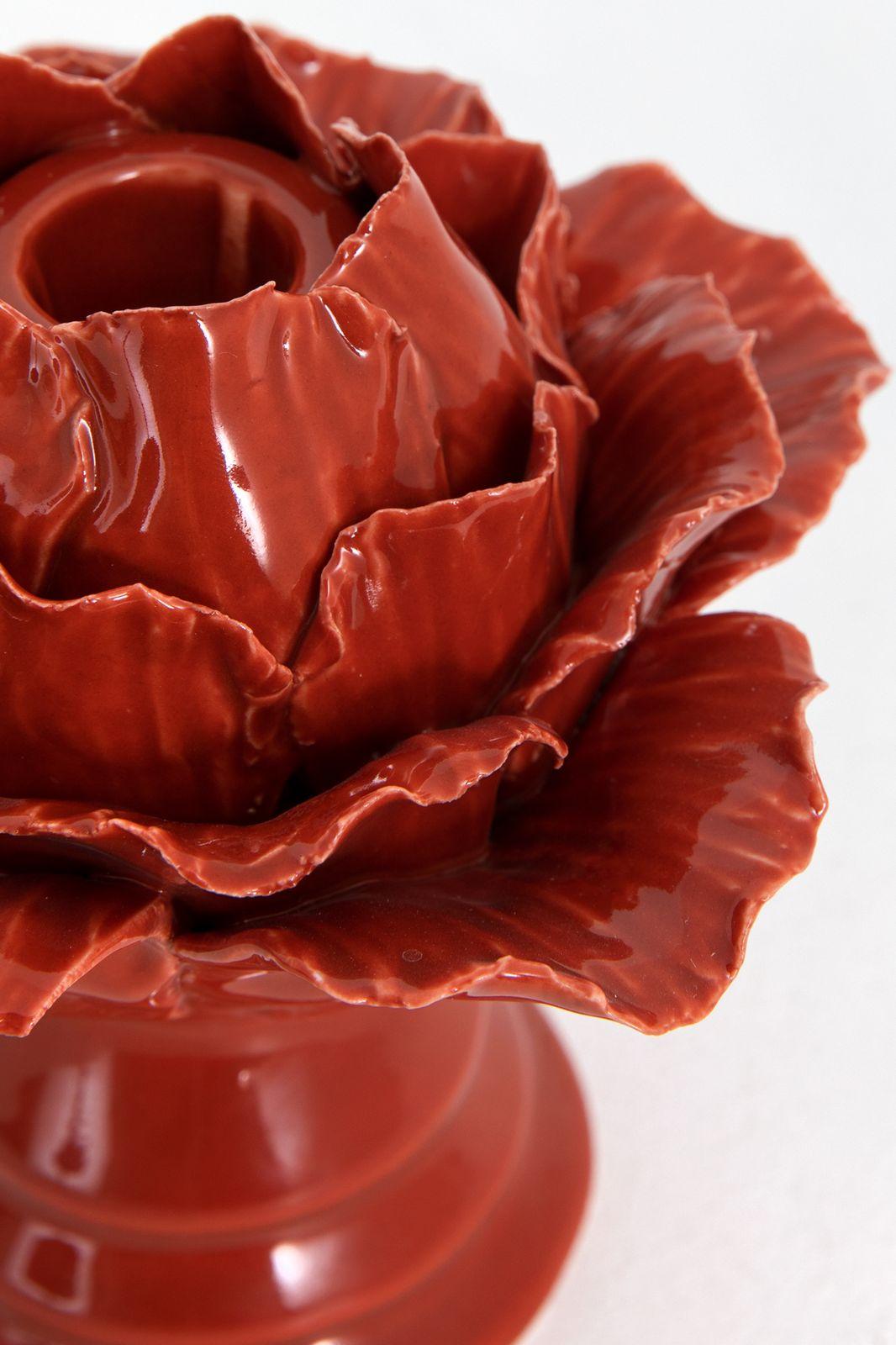 Rode kandelaar bloem - Homeland   Sissy-Boy