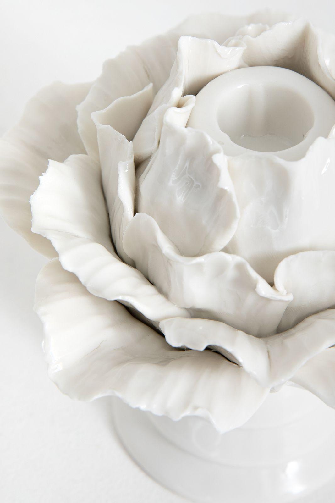 Witte kandelaar bloem - Homeland   Sissy-Boy