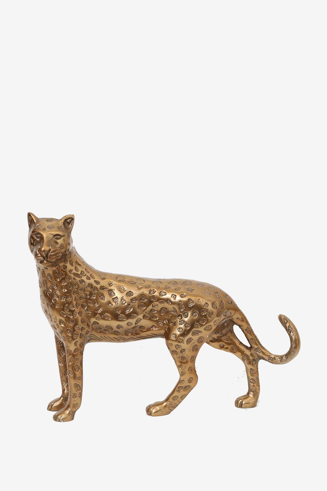 Goudkleurige leopard