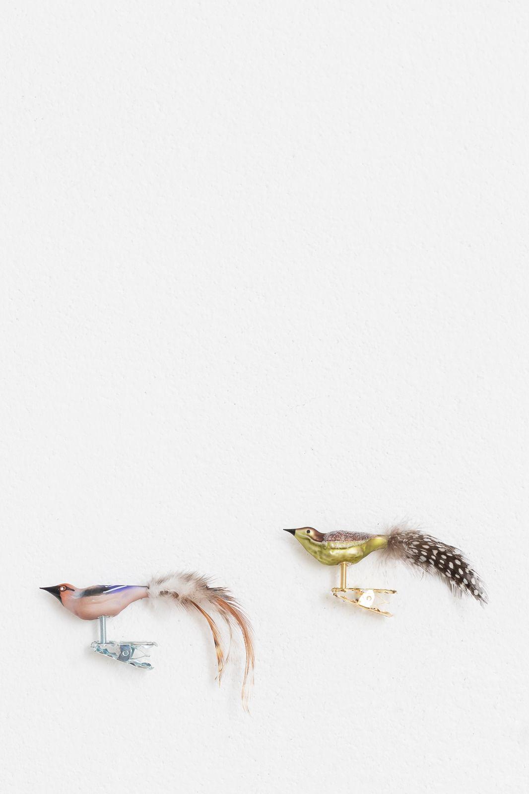 Set van 2 vogeltjes groen - Homeland | Sissy-Boy
