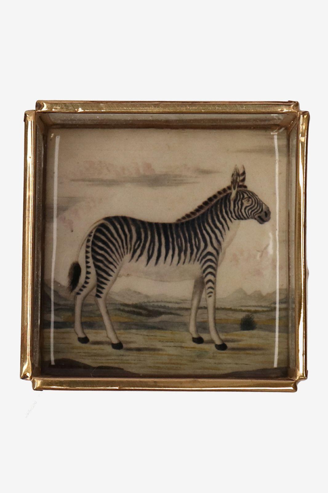 Gouden glazen box zebra - Homeland   Sissy-Boy