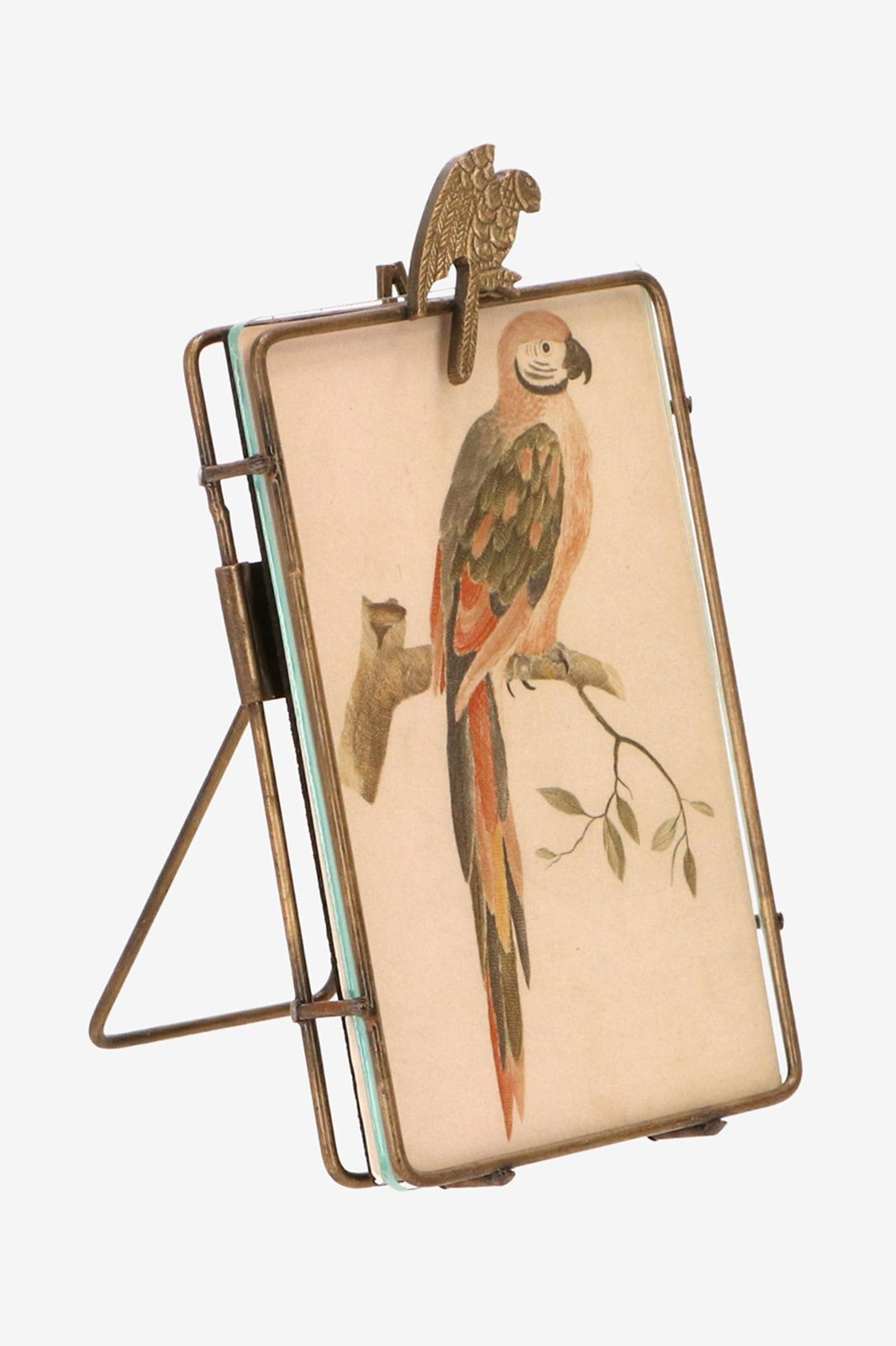 Fotolijst met papegaai (15x10 cm) - Homeland | Sissy-Boy