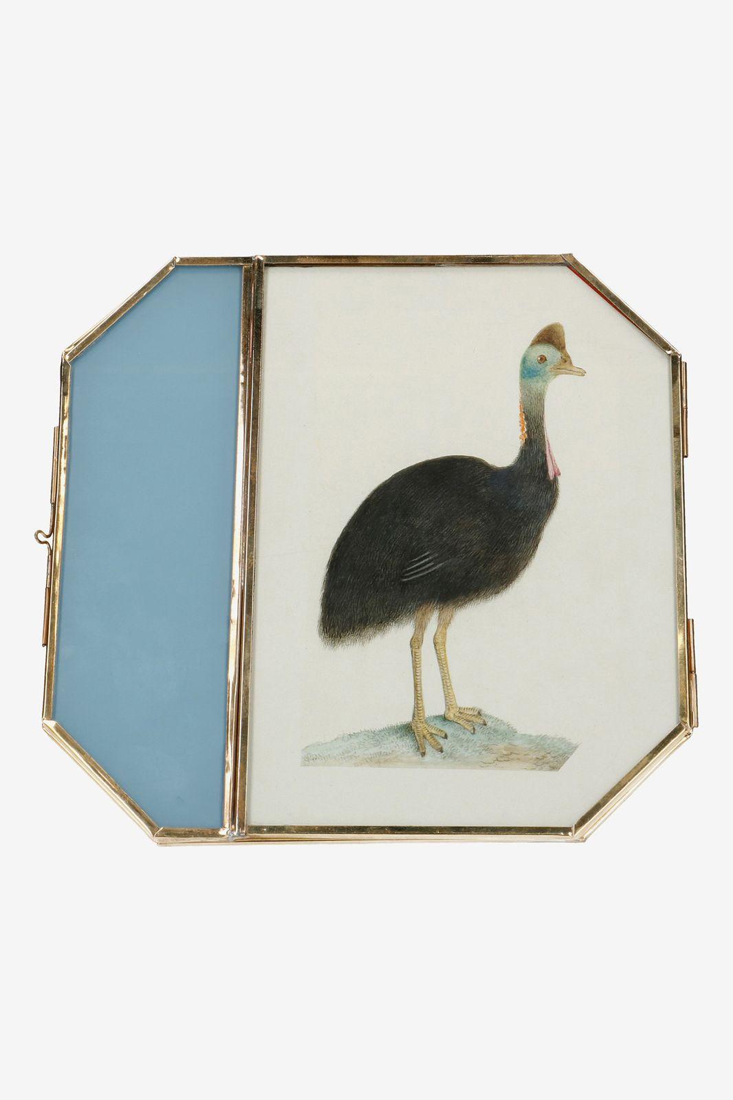 Fotolijst staand vogel (32x34 CM)
