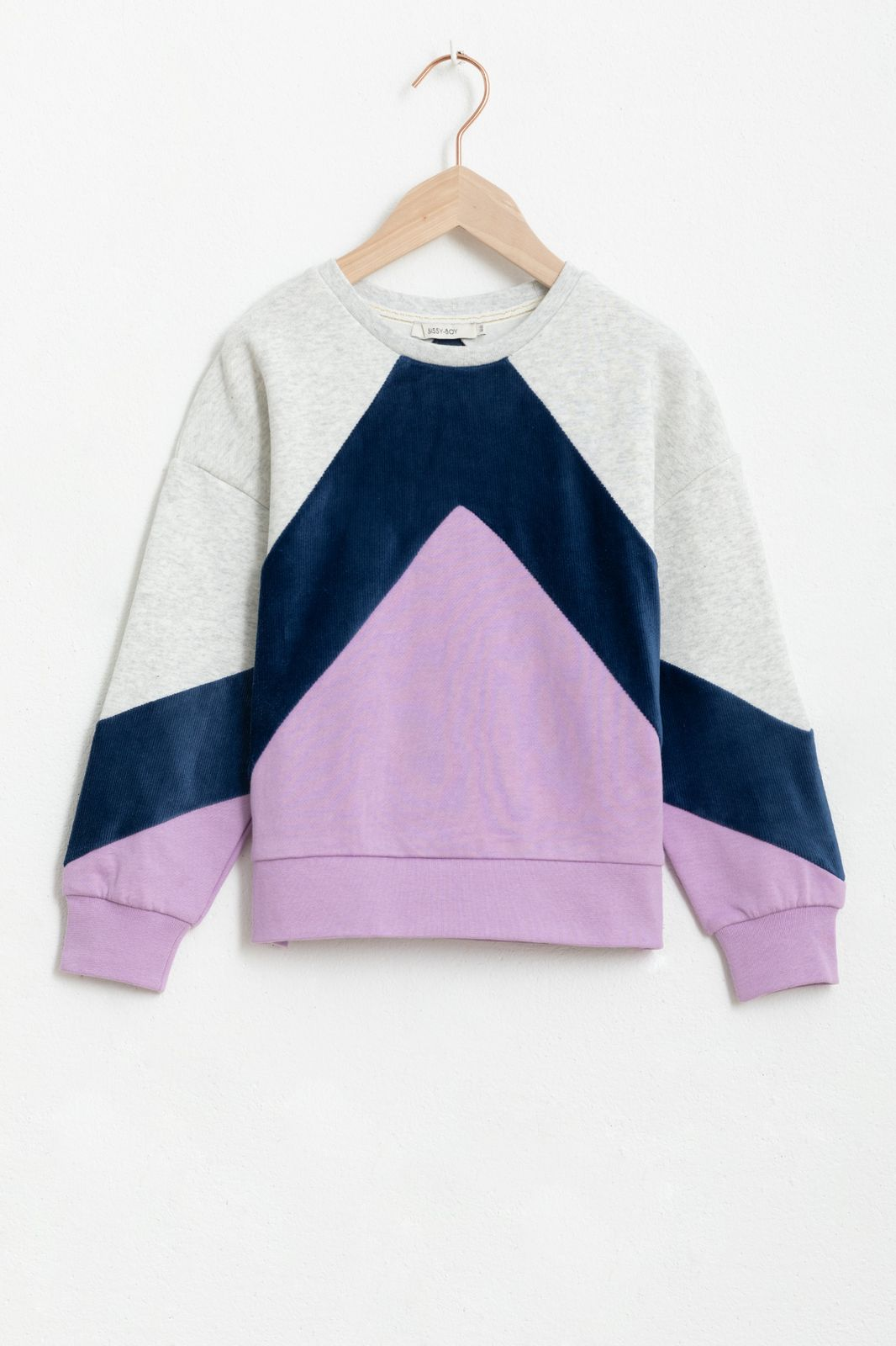 Paarse colorblock sweater